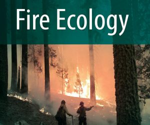 FECO-cover-image